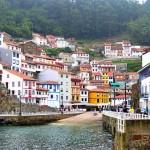 España se convierte en el primer productor ecológico de la UE