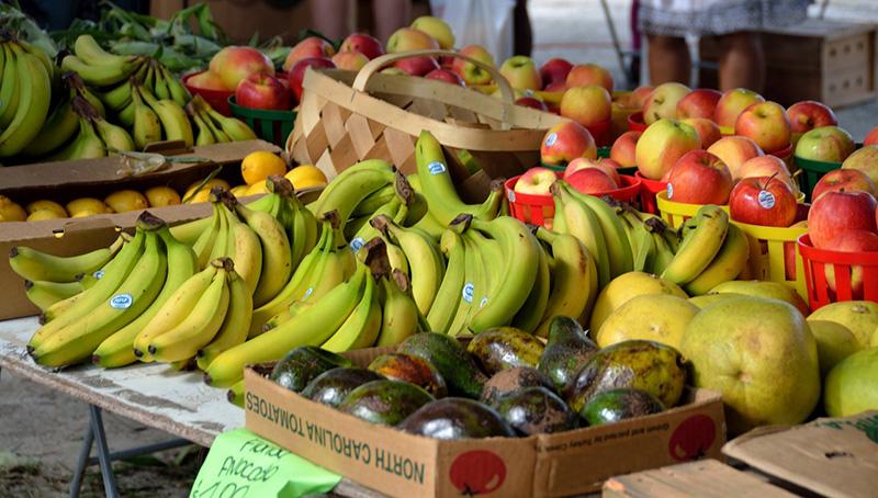 Exportación frutas y hortalizas - Blog Unagras