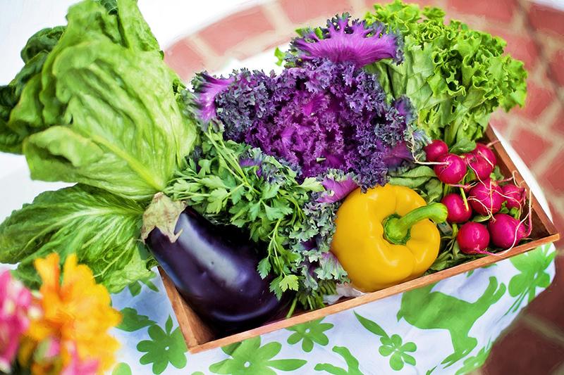 Exportación furtas y hortalizas - Blog Unagras