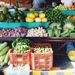 Perspectivas de Frutas - Verduras - Hortalizas
