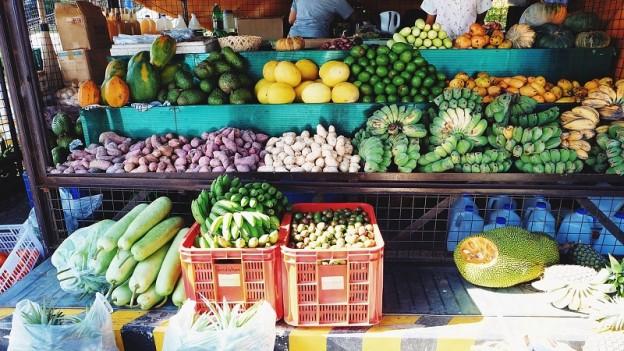 Frutas - Verduras - Hortalizas